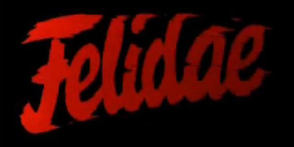 felidae_01